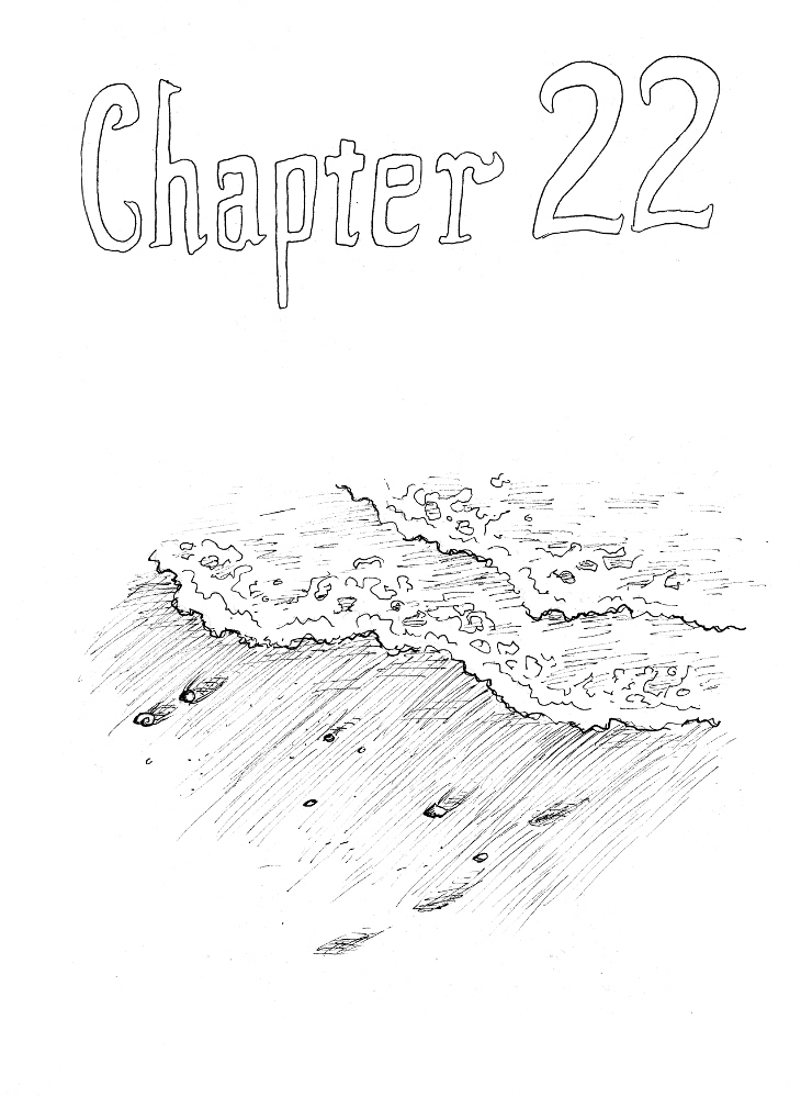Chapter 22 P251